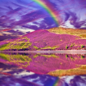 ID-100315446 Colouful Landscape with Rainbow 280715
